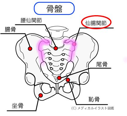 ぎっくり腰の対処法 は、関節の動きがポイント